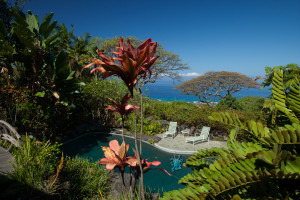 Hawaiian Retreat
